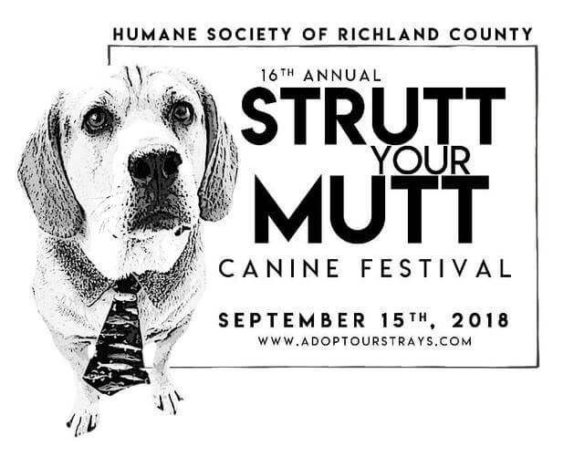 Strutt Your Mutt Canine Festival and 5k